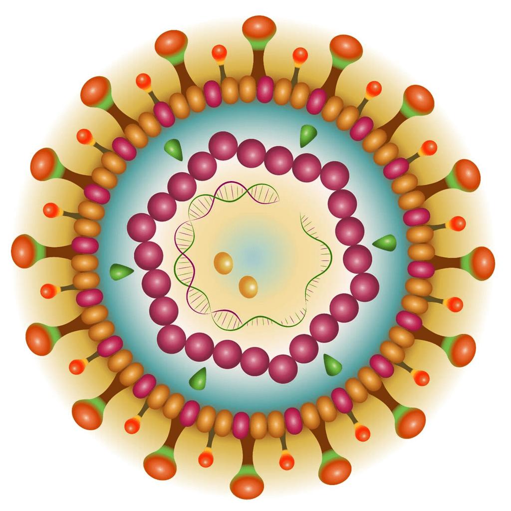 Hepatitis-B-Thumb