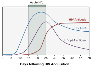HIV Acquisition